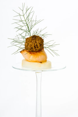 Entree with scallop and dill